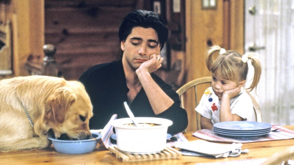 'Family Matters,' 'Perfect Strangers,' 'Full House' Head to Hulu