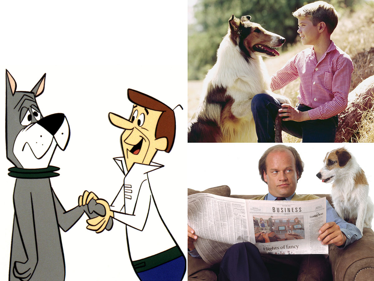 24 Best-Loved Family Dogs on TV
