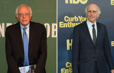 Larry David, Bernie Sanders
