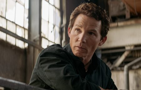 Animal Kingdom - Shawn Hatosy