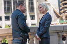'Chicago P.D.'s Anne Heche Teases What's Ahead for Her New Character