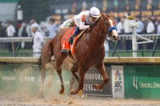145th Kentucky Derby: Find Out Which Horses Are Racing & More