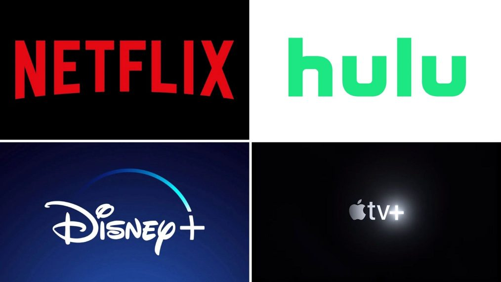 Best of the 2010s: Which Streaming Service Had the Most to Offer? (POLL)
