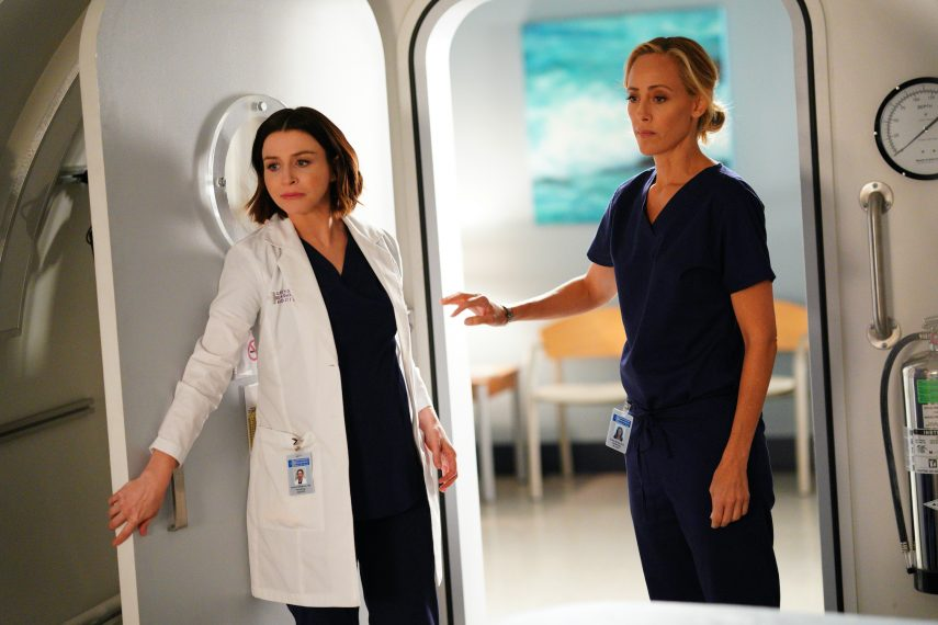 Grey's Anatomy Season 16 Episode 10, Amelia Shepherd, Teddy Altman
