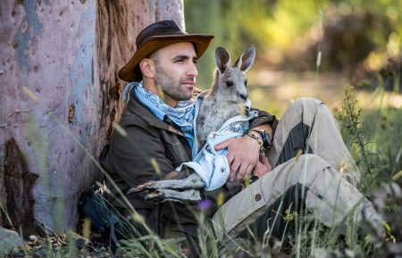 COYOTE PETERSON BRAVE THE WILD KANGAROO ANIMAL PLANET