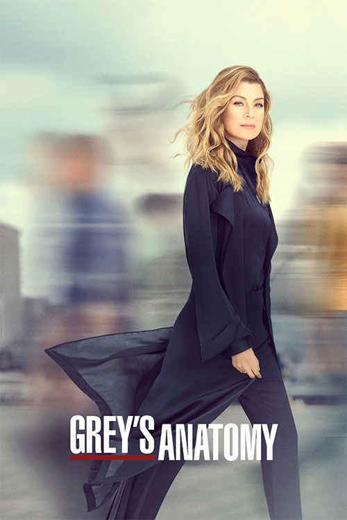 Greys Anatomy Box Art