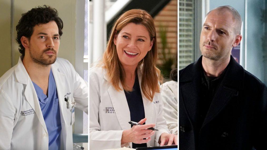 Grey's Anatomy Season 17 Meredith Love Triangle DeLuca Hayes