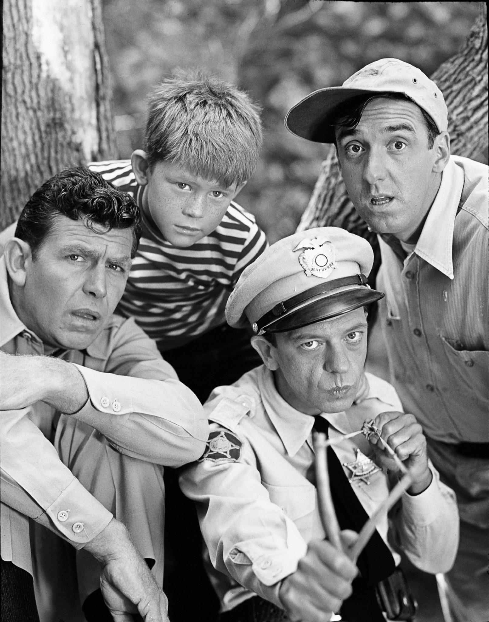 MeTV's 'Month of Mayberry' Celebrates 'Andy Griffith Show' & More Memorable  Shows - TV Insider
