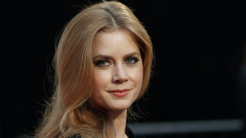 King of the Hill Guest Stars Amy Adams