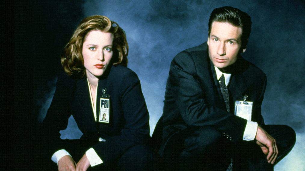 The X-Files Gillian Anderson David Duchovny Dana Scully Fox Mulder
