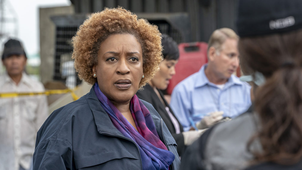 CCH Pounder NCIS Los Angeles Loretta Wade