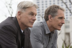Should the Potential New 'NCIS' Spinoff Set in Hawaii Be Introduced as a Backdoor Pilot?