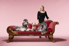 'Pooch Perfect': How Well Does Rebel Wilson Know Her Dog Breeds? (VIDEO)